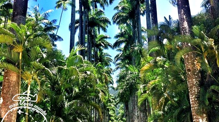 Entrada do Jardim Botanico