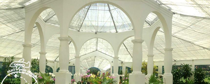 Jardim Botânico - Estufas