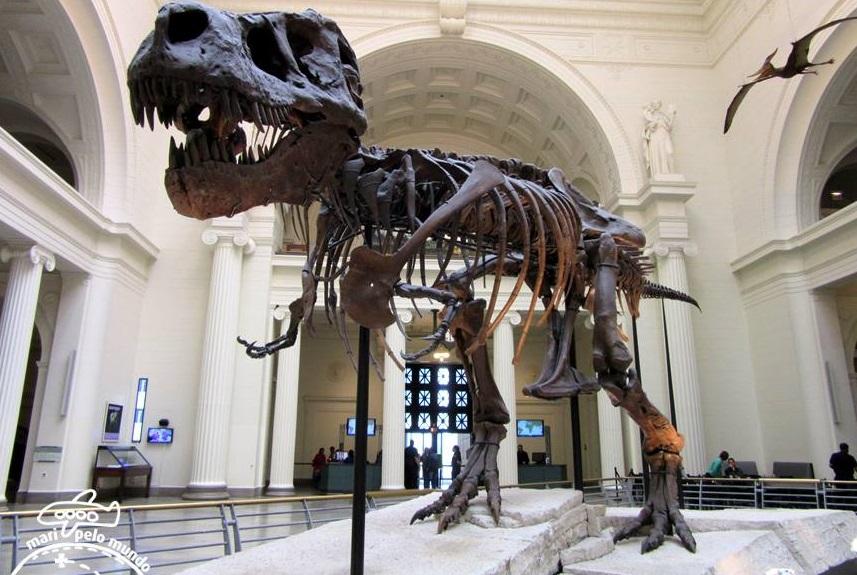 Esqueleto do Tiranossauro Rex