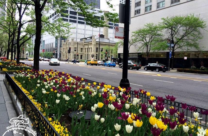 Magnificent Mile - Michigan Avenue na primavera