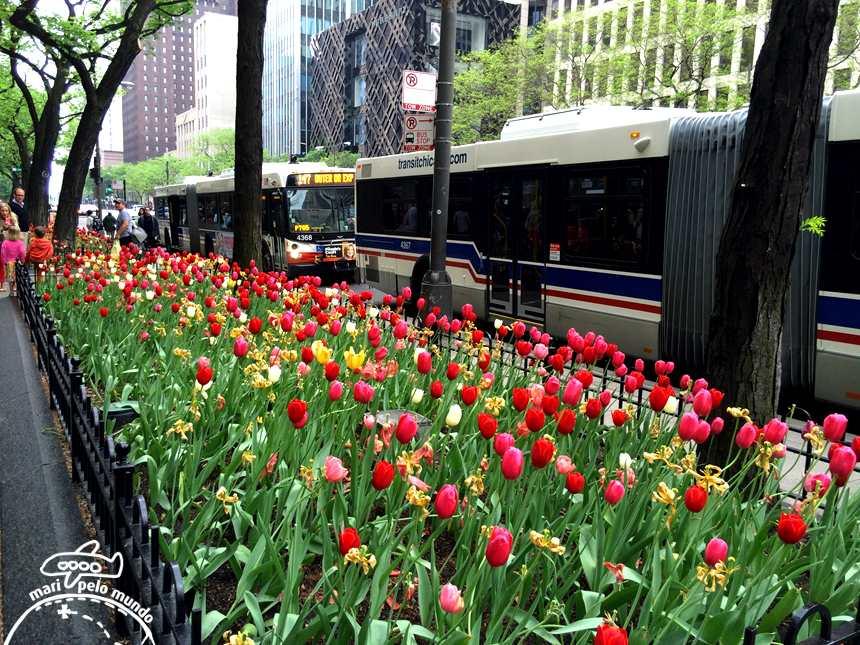 Michigan Avenue na primavera