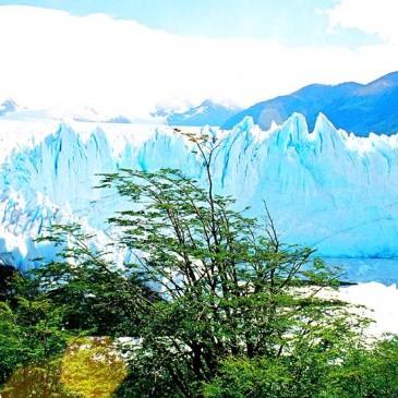 Vista do Glaciar Perito Moreno - El Calafate