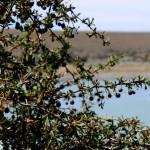 Verão em Ushuaia e Cerro Frias – Patagônia Argentina
