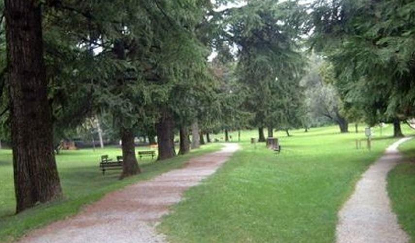 Parque da Villa Gomes