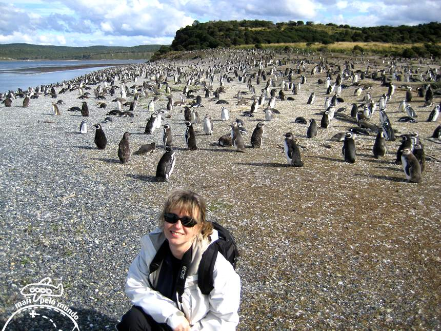Desembarque na ilha dos pinguins de Magalhães