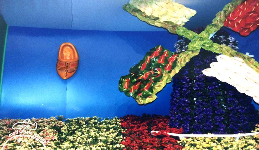 Exposicao de flores