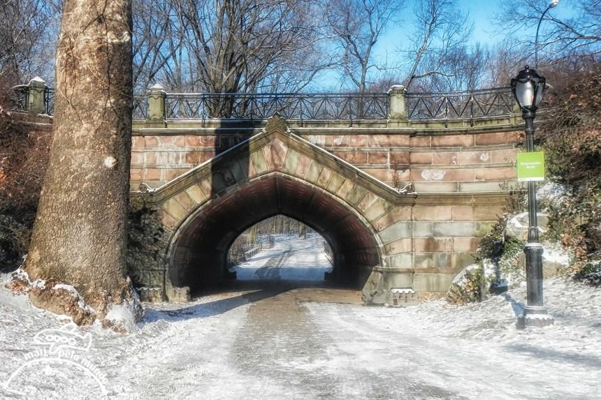 Central Park e a neve
