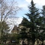 Lyon: Instituto e Museu Lumière: Um museu imperdível
