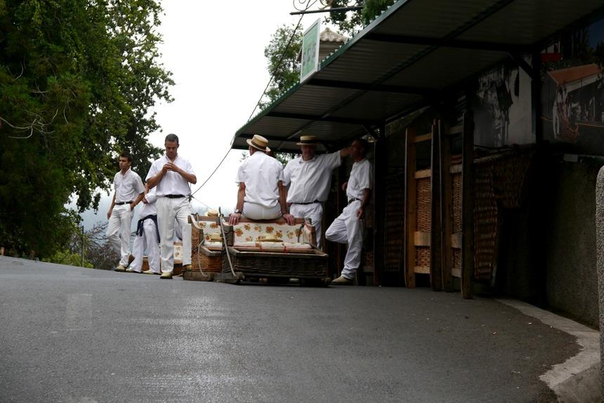 Carros de cesto do monte