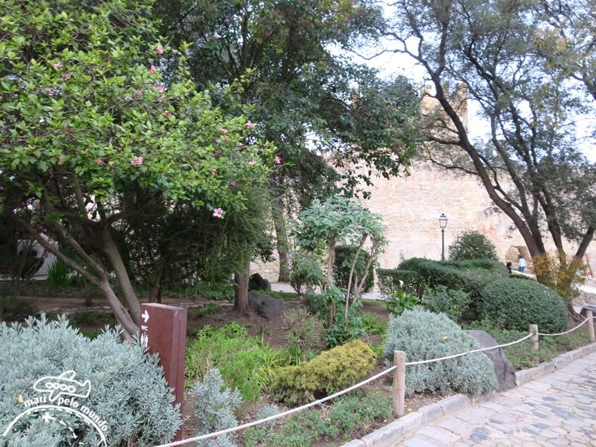 Jardim de espécies autóctones
