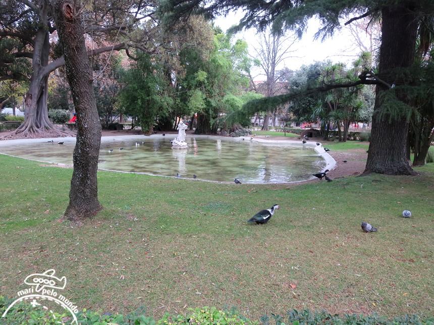 Lago - Jardim da Estrela