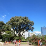 O que fazer no Parque do Povo? Passeios em São Paulo