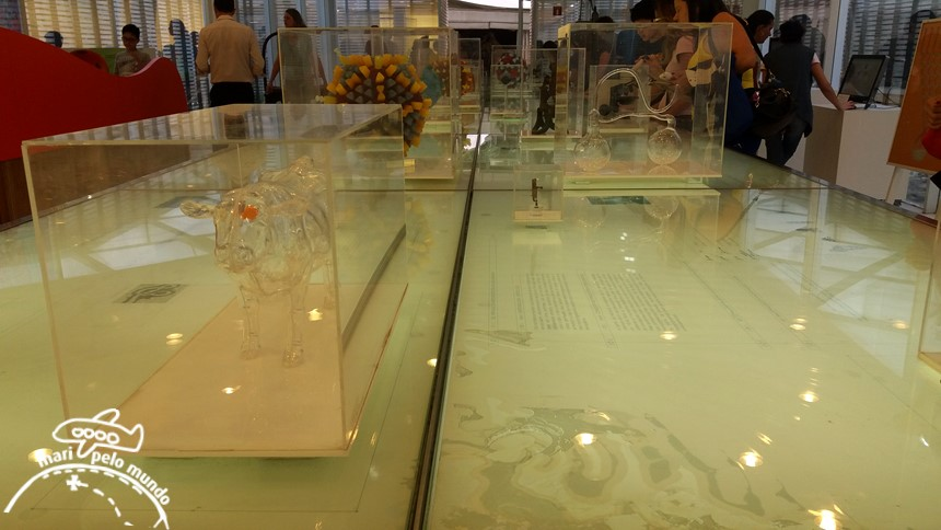 Museu de Microbiologia do Instituto Butantan
