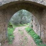 Álbum de fotos do Alentejo: Evoramonte