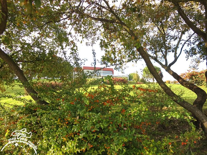 Jardim Amalia Rodrigues
