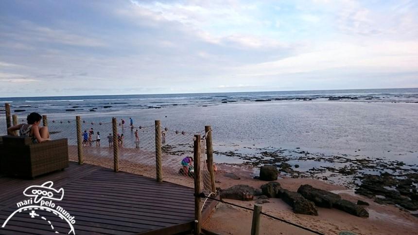 Projeto Tamar Praia do Forte Bahia (15)