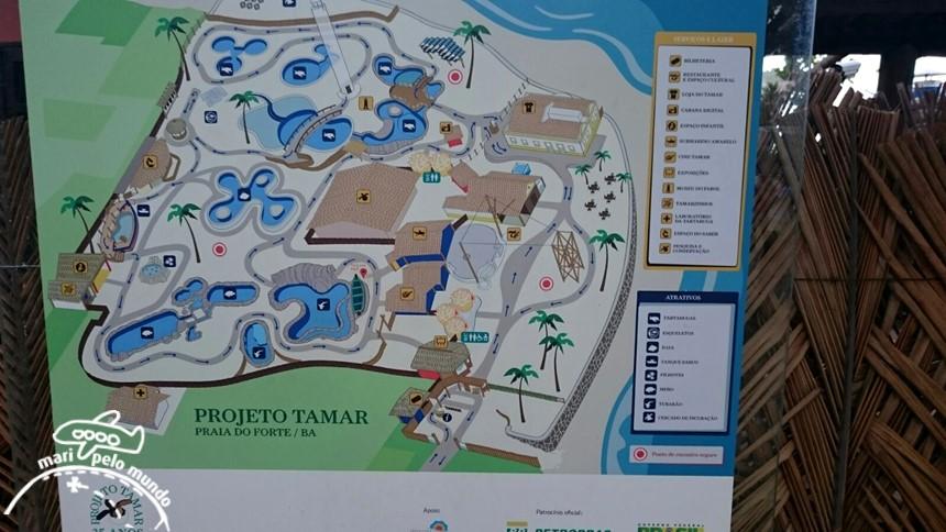 Projeto Tamar Praia do Forte Bahia