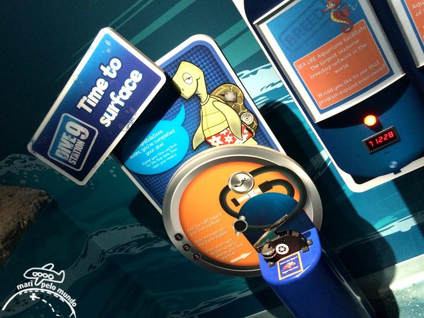 Visitando o Sea Life Aquarium em Orlando (3)
