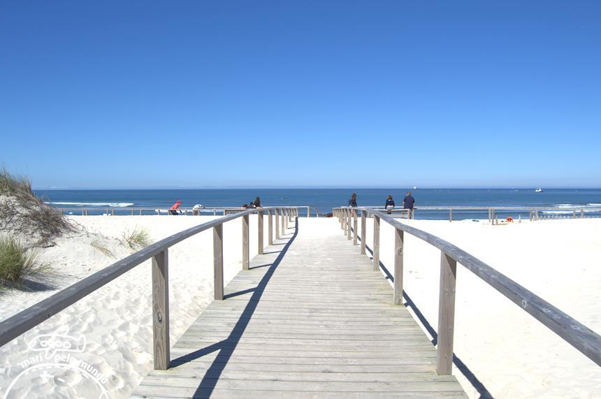 Praia da Barra 15 (Copy)