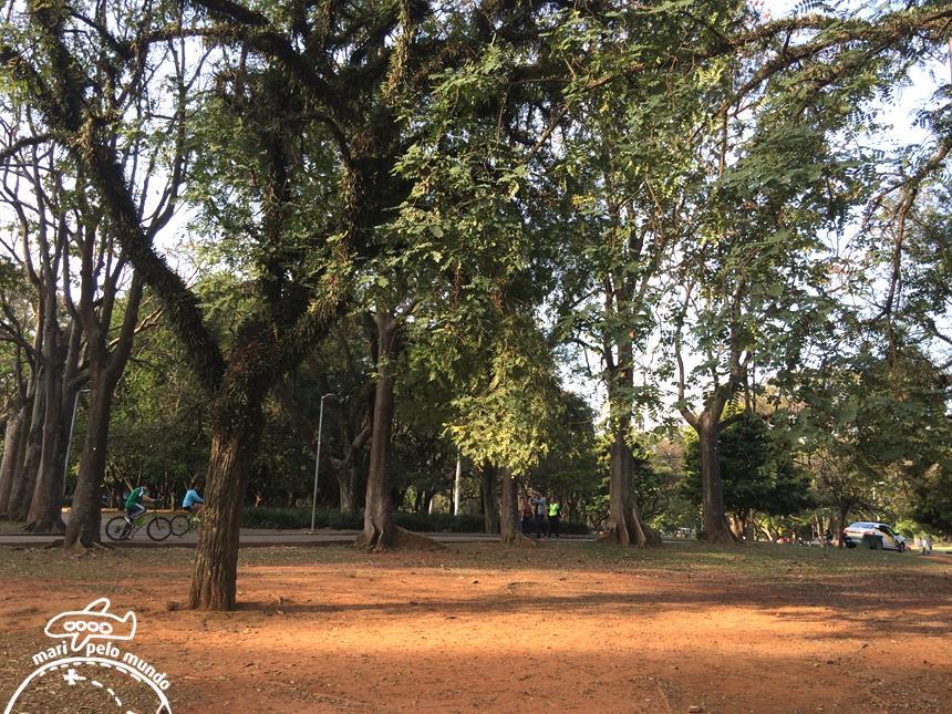 O parque tem muito verde