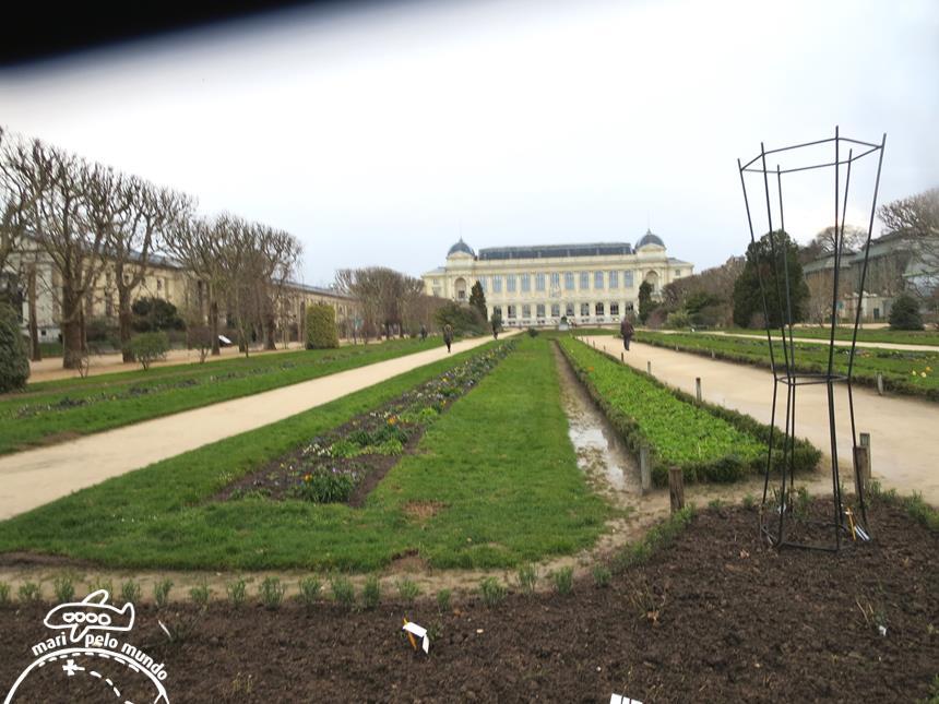 Jardin des Plantes (3)