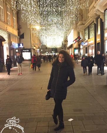 A bela iluminação de Natal em Viena