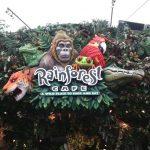Dica de restaurante em Miami: Rainforest Café