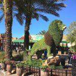 Um dia perfeito no Busch Gardens em Tampa