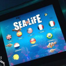 Sea Life Aquarium de Orlando