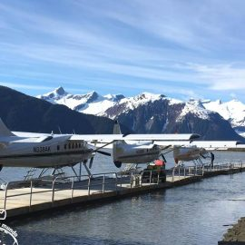 Passeios no Alasca: Taku Glacier Lodge
