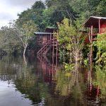 Destino: Amazônia – Preparando a viagem de julho