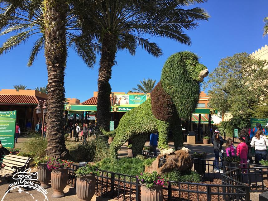 Noites De Ver O No Busch Gardens Em Tampa Mari Pelo Mundo Viagens Exclusivas E De Luxo Em