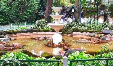 Passeio em Campinas com criança: Bosque dos Jequitibás