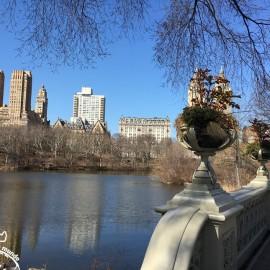 Um passeio pelo Central Park em Nova York