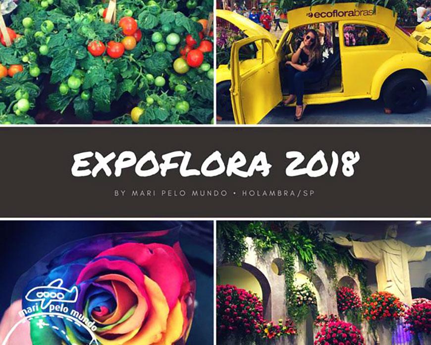 Como visitar a Expoflora 2018