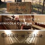 Vinicola Concha Y Toro – Vale a pena visitar?