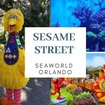 Sesame Street no SeaWorld Orlando