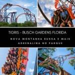 Busch Gardens com mais adrenalina