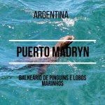 Passeios em Puerto Madryn (cenário do filme o Farol das Orcas)