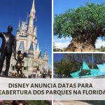A reabertura dos parques da Disney