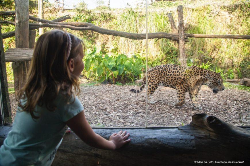 Zoologico de Gramado
